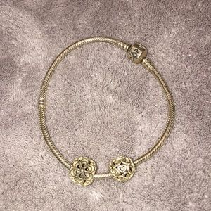 Pandora Bracelet with two Pandora Charms!